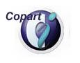 Авто на аукционах Copart